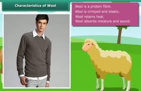 Fibre to fabric-Wool: Characteristics of Wool