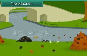 Water Pollution (8th Grade Science)